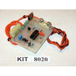220V Light Flasher 8020
