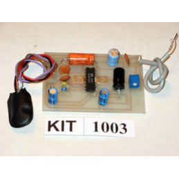 6 Watt Amplifier 1003