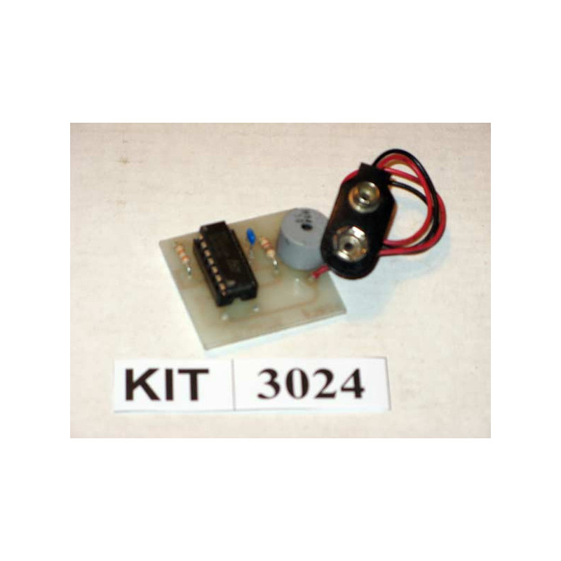 Low Voltage Alarm 3024