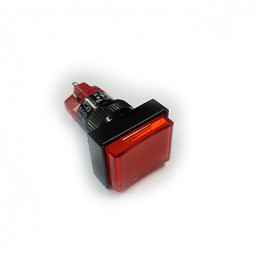 D16 Push Button Illuminated rectangular Red Momentory 1NO 1NC