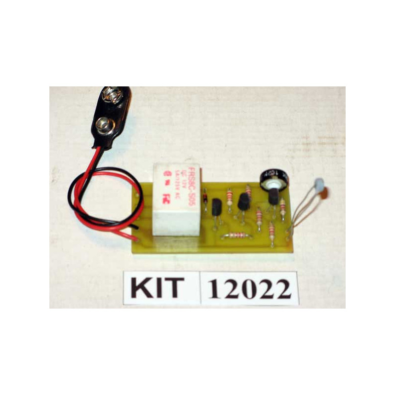 Electronic Thermostat 12022