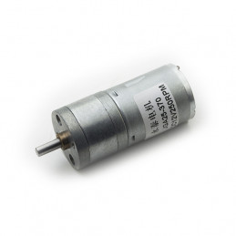 Geared Motor 12V 250RPM